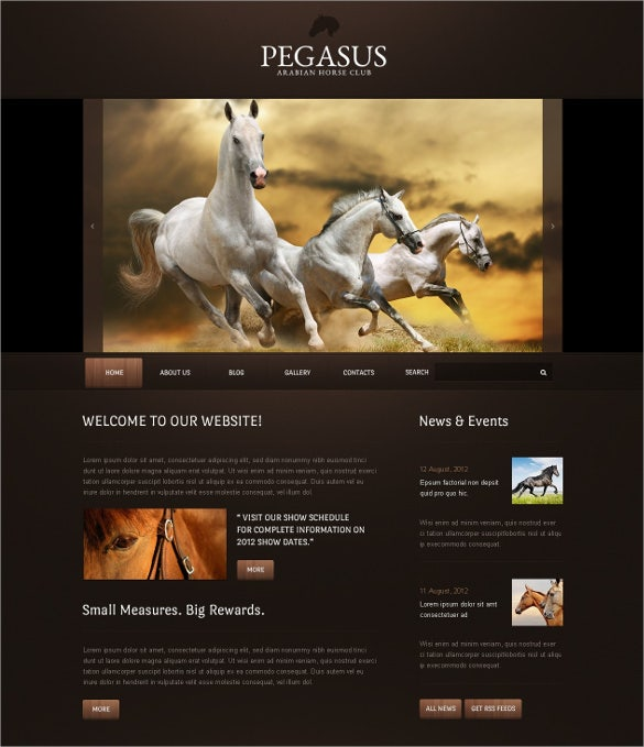 animal pet club drupal template