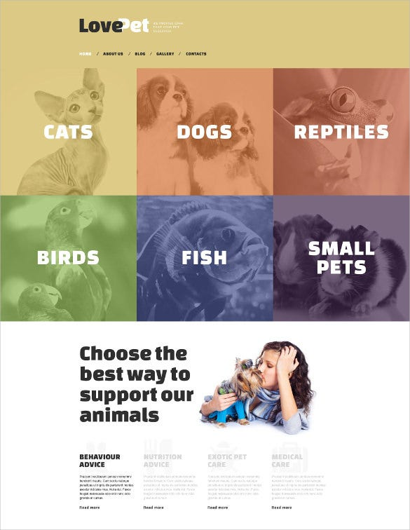 love animal pet drupal template
