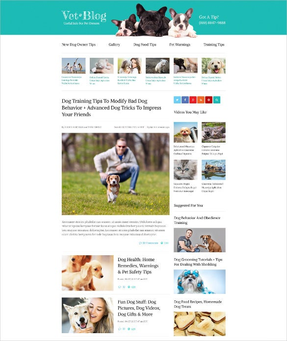 animal pet veterinarian blog website template