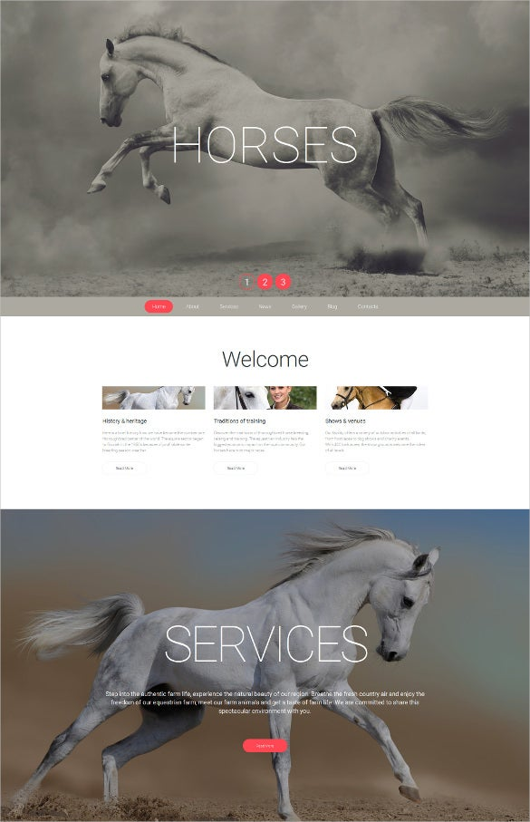 animal pet responsive moto cms 3 blog template