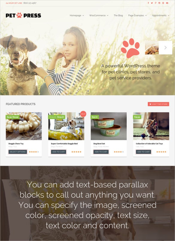 animal pet services wordpress blog theme
