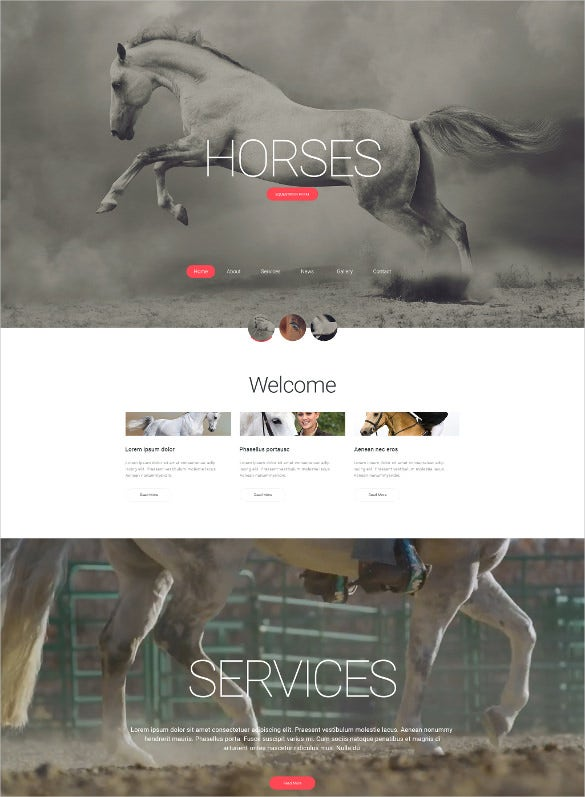 animal pet club html5 website template