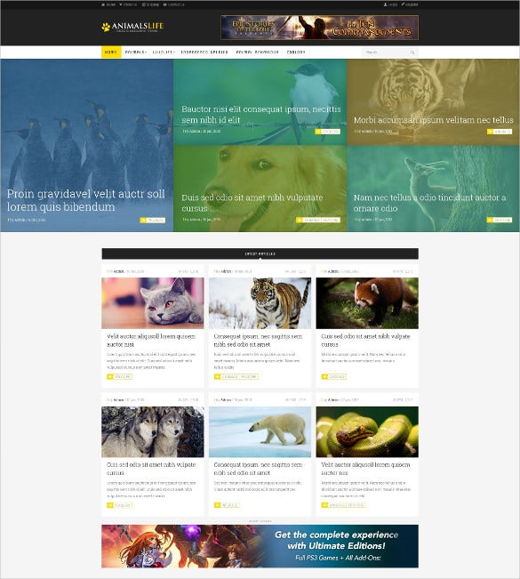 animal pet ecommerce psd magento template 5