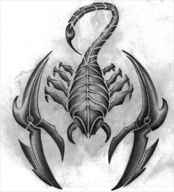 scorpio tatoo drawing download