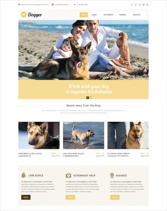 animal pet service bootstrap website template