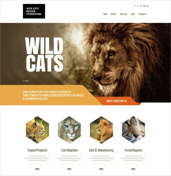 wild life animal pet responsive bootstrap website template