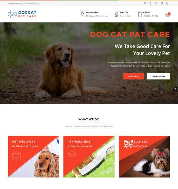 animal pet care veterinary wordpress bootstrap theme