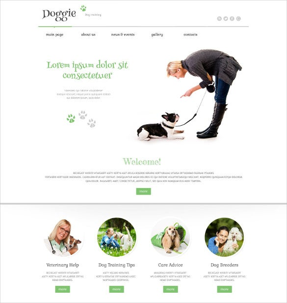 responsive animal pet wordpress php theme