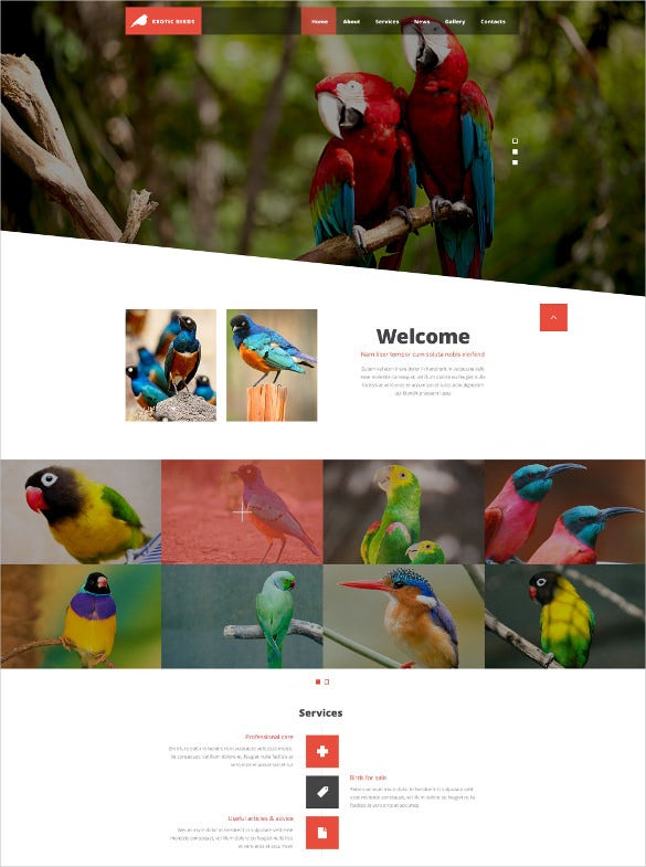 exotic animal pet php website template