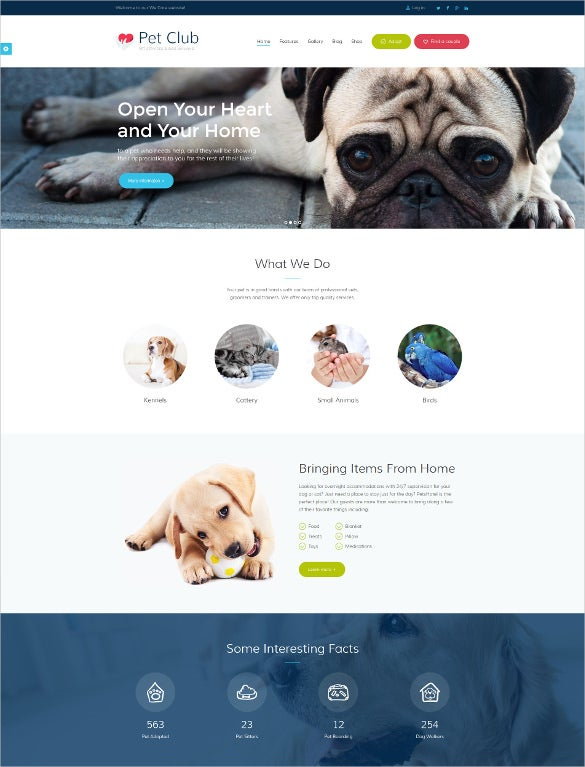 animal pet club services community php theme