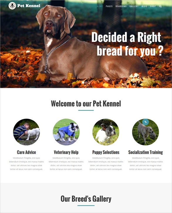 animal pet care dog kennels wordpress php theme