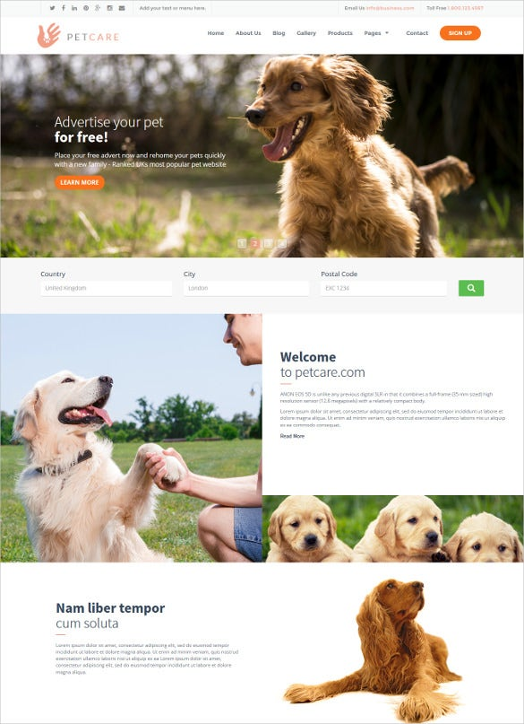 animal petcare html php template