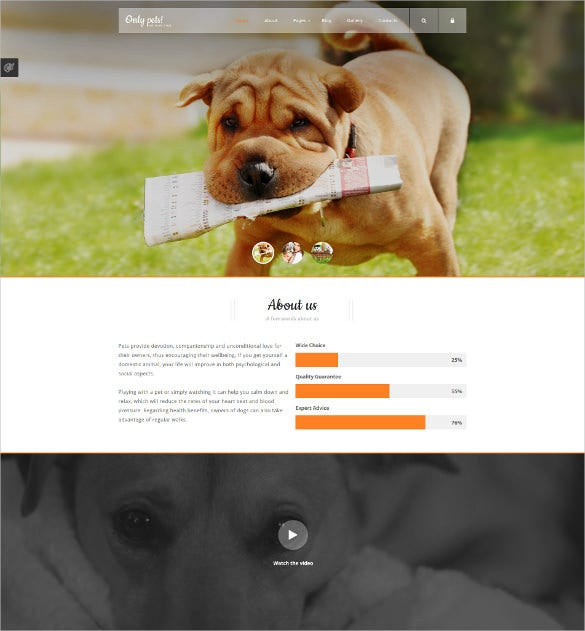 animal pets website joomla template 75