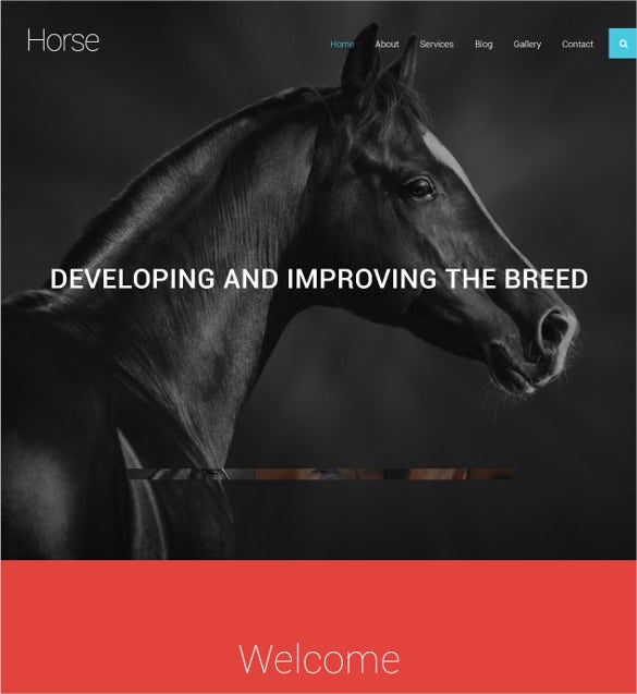 animal pets website horse joomla template 75