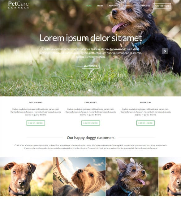 animal pets care dog website html theme 17