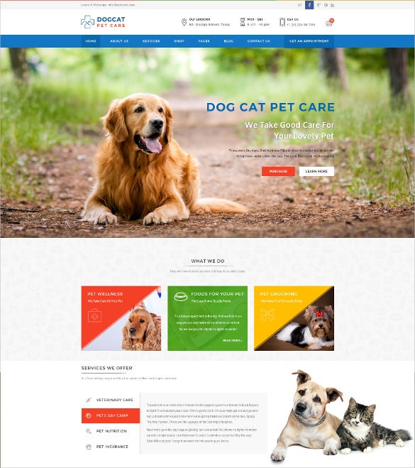 animal pet care veterinary website psd template 12