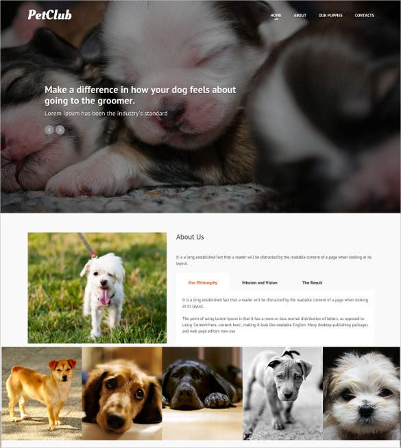 animal pets pets responsive website one page theme 12