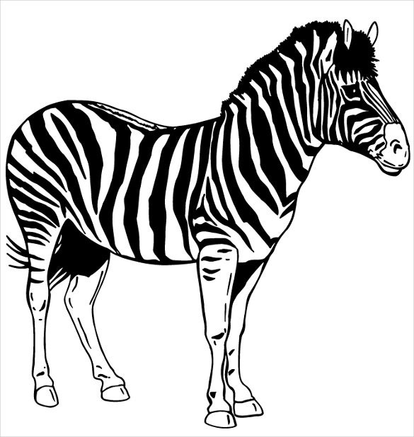 zebra stencil free printable download