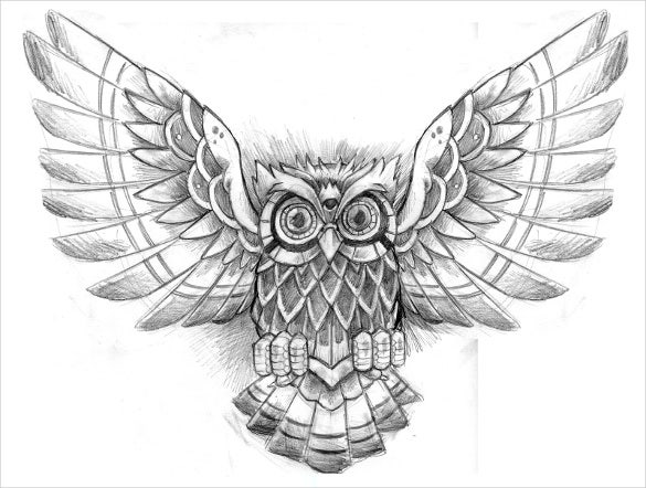 owl tattoo drawing