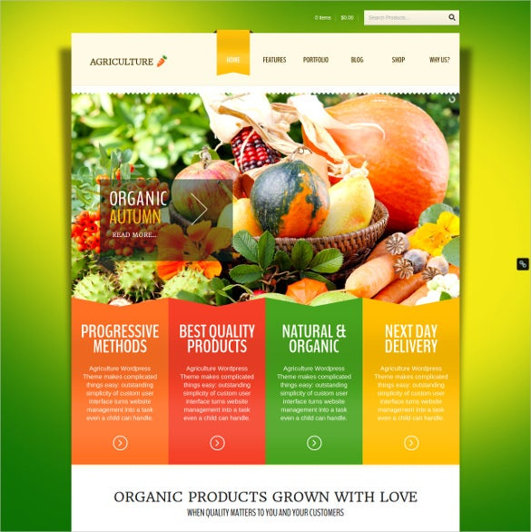 grocery store woocommerce wp theme