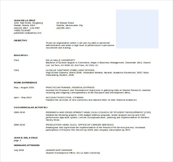 Business Resume Template Word 20