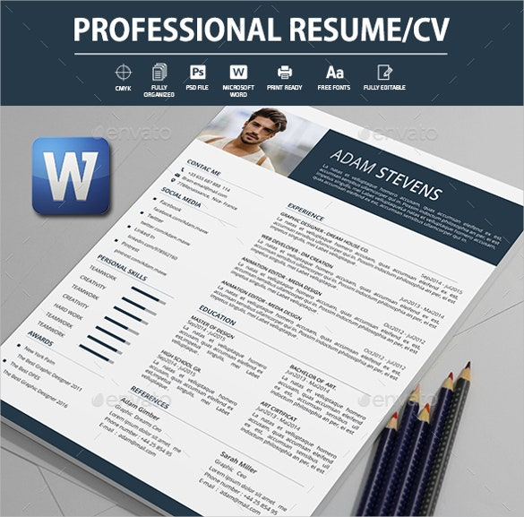 flexible page design professional resume in word format