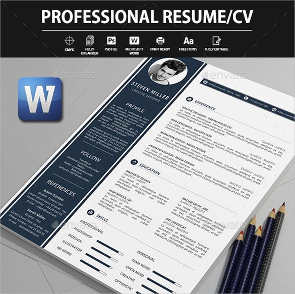 editable professional resume template word format