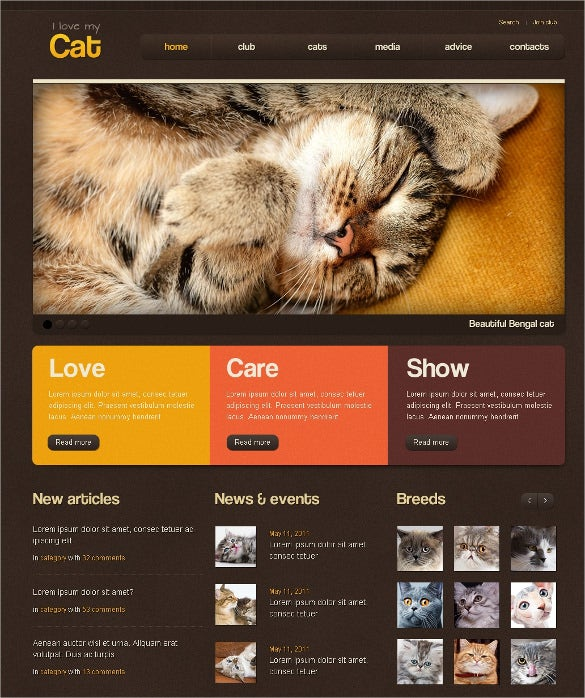 animal pet cat psd template 11