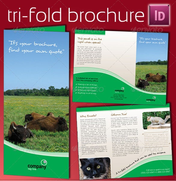 easy to print tri fold brochure template