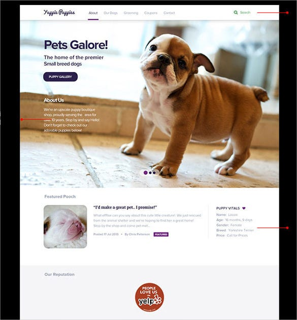 puppy animal pet shop psd theme 10
