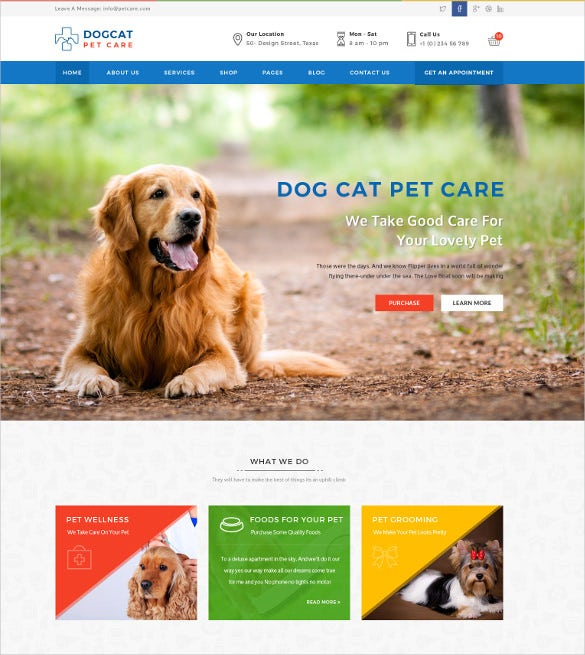 animal pets veterinary psd template 12