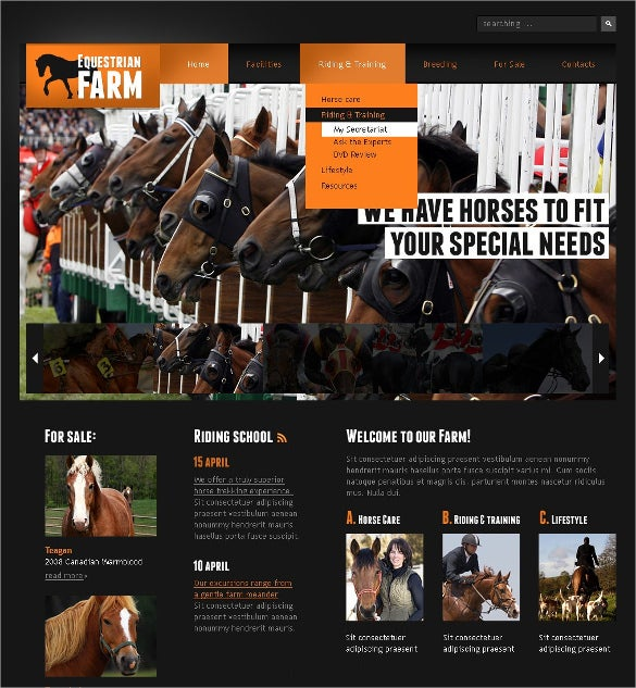 horse animal pets psd template 11