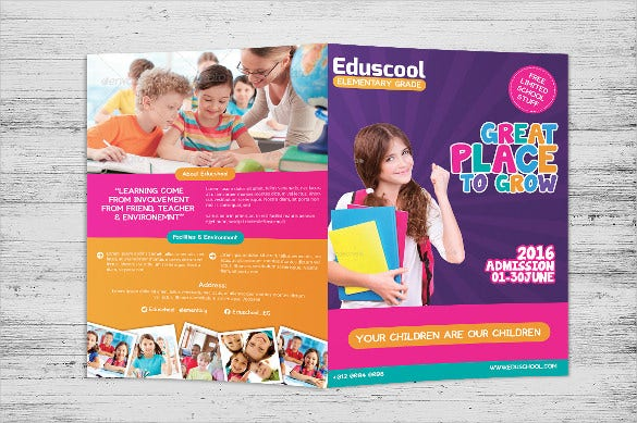 elementary school education bi fold template