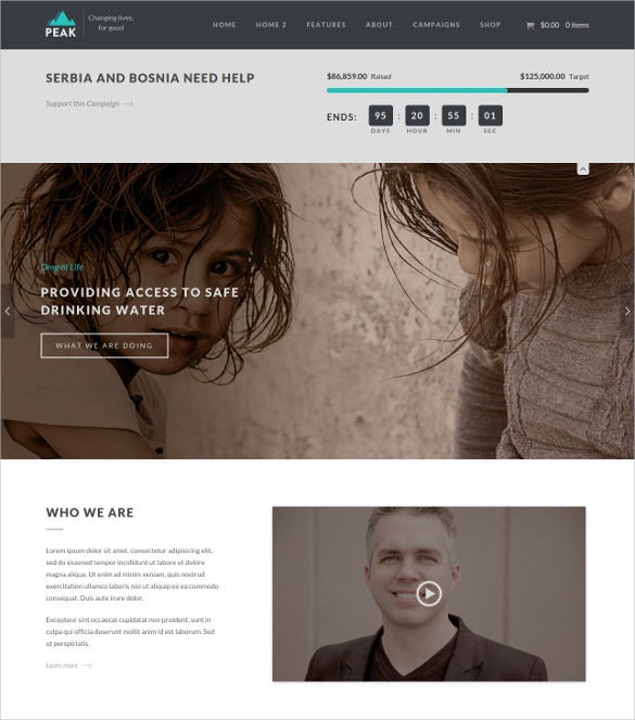 charity nonprofit wordpress theme