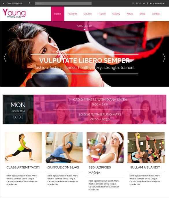 young fitness spa wordpresstheme
