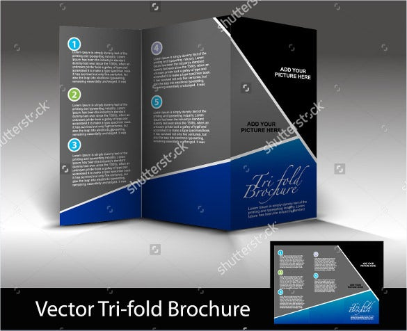tri fold brochure design element vector illustration