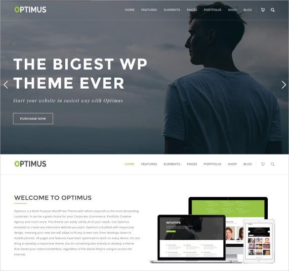 ultimate wordpress woocommerce theme 32