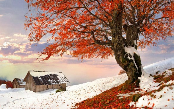 opensky winter wallpaper download