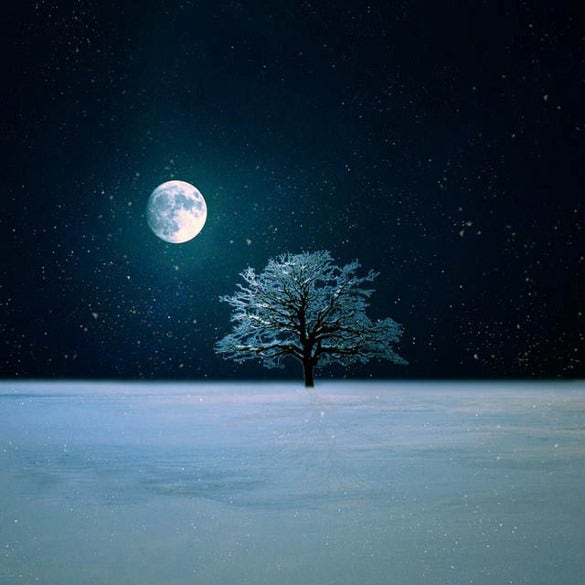 winter night live wallpaper download