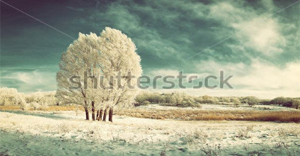 Vintage Winter Wallpaper Download