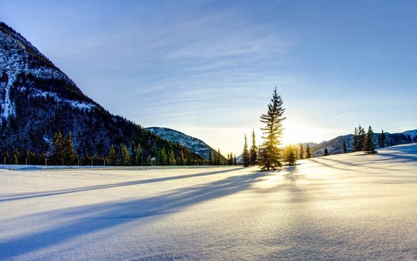 sunny winter wallpaper download