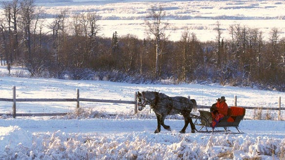natural winter wallpaper download