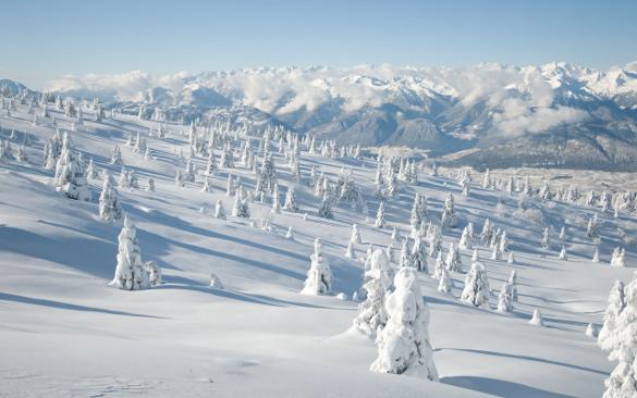 white land winter wallpaper download