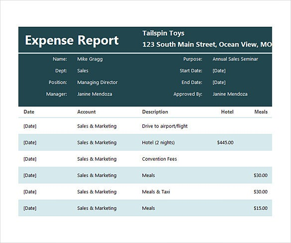 expenses report free word 2010 format template