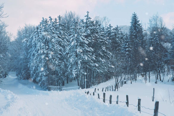 snowflakes winter wallpaper download