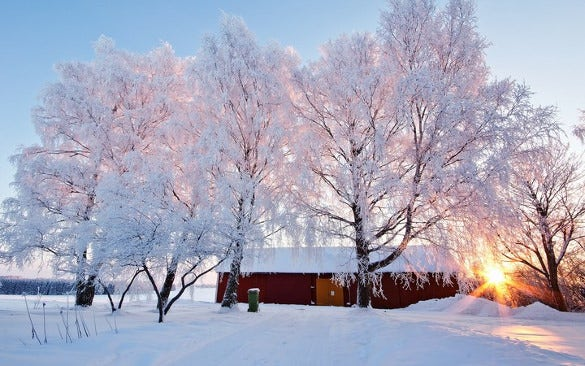 beautiful winter wallpaper download1