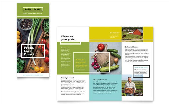organic food brochure template1