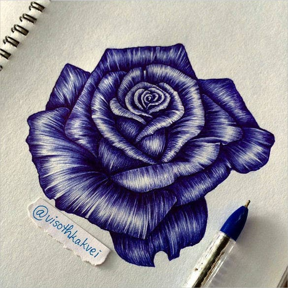 beautiful rose pen drawing