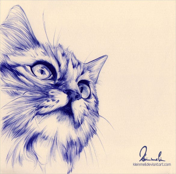 ballpoint pen cat drawing download