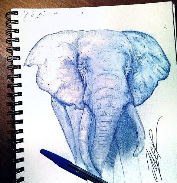 drawing of an elephant with ball pen